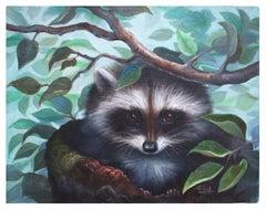 LIttle Scamp Raccoon