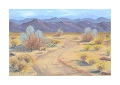 Midcentury Palm Springs Landscape