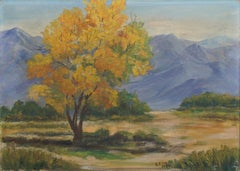 Mid Century California Grapevine Foothills in Autumn