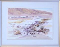 Rocky Arroyo Death Valley California Landscape