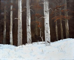Colorado Birches in Winter Landscape