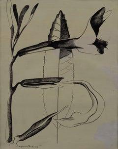 """Sticky Monkey Flower, Big Sur"" - Mid Century Botanical Illustration"