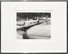 Wood River, Idaho 1983