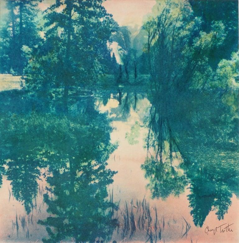 Lake Reflections - Gray Landscape Art by Cheryl Trotter