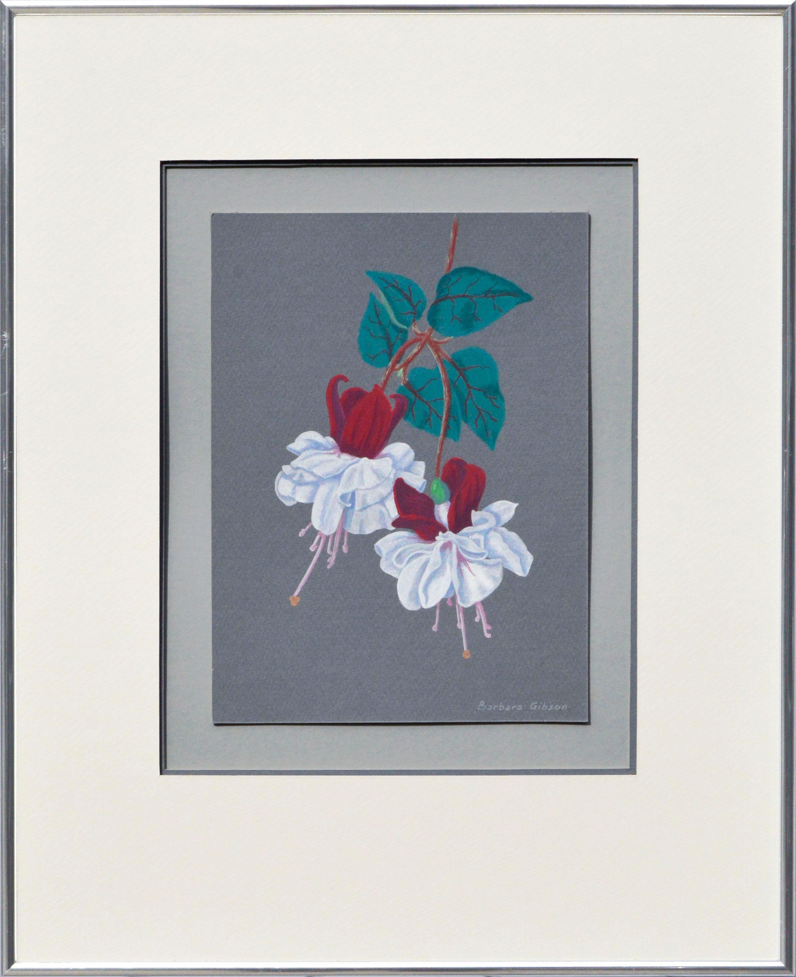 Red and White Fuchsia