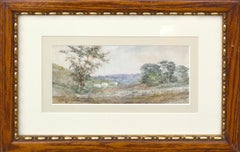 New York Country Afternoon Landscape