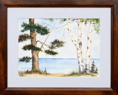 Pine and Birch at the Edge of the Lake - Landscape