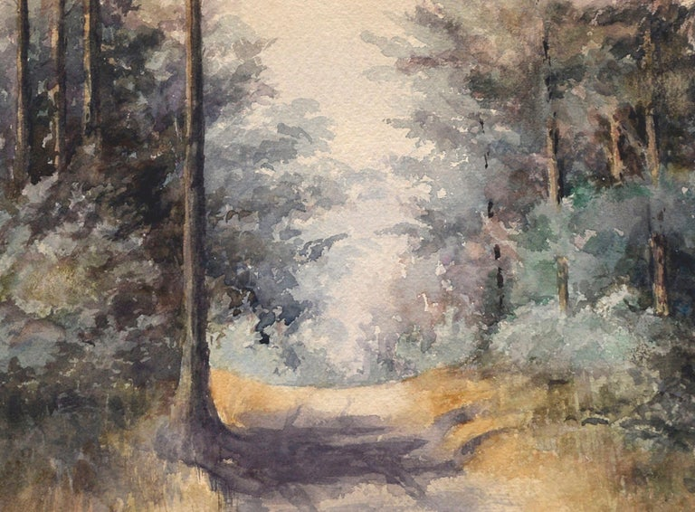 California Forest Path For Sale 2