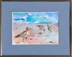 Florida Seabirds Landscape