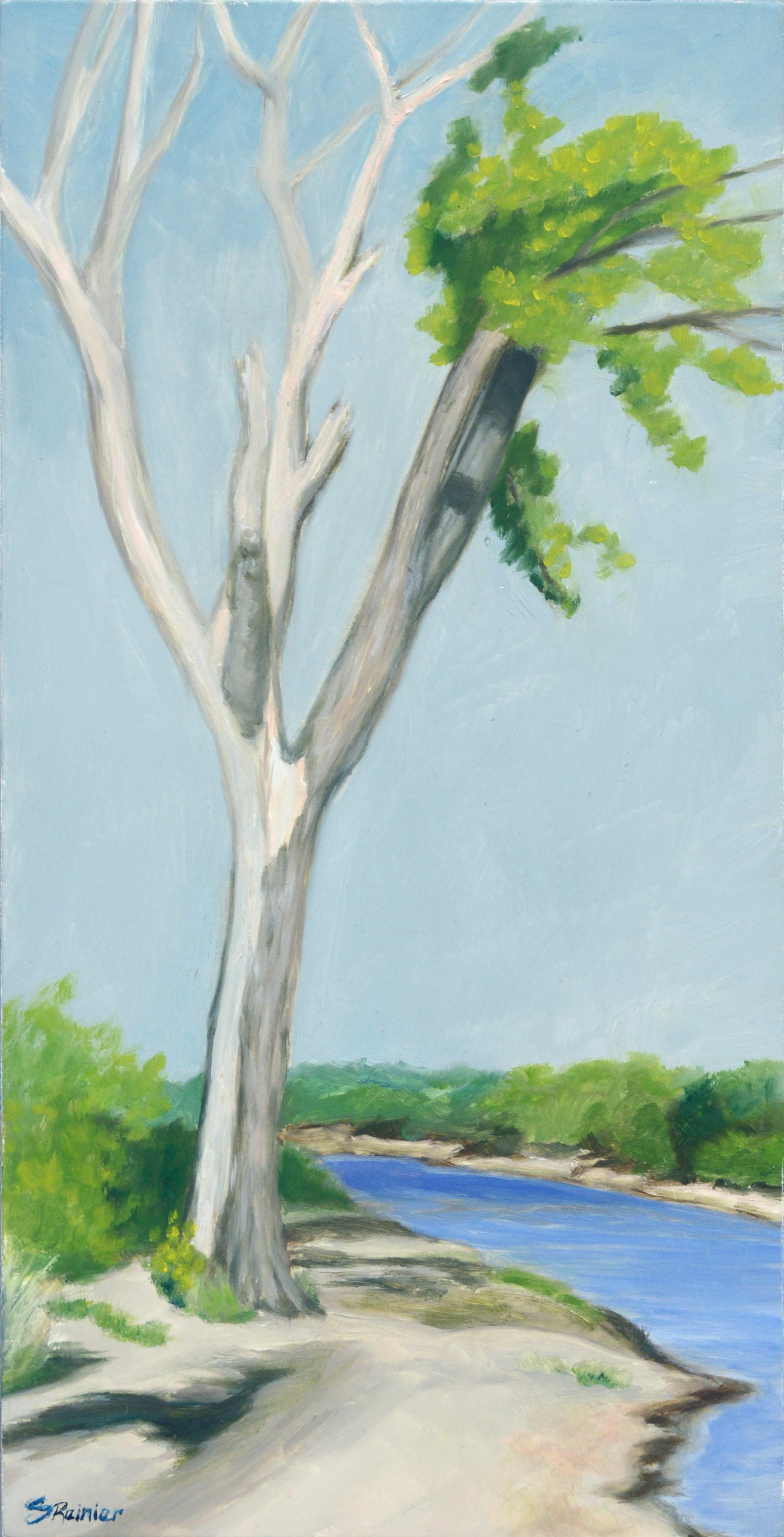 Tree at the Riverbank - Landscape
