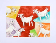 Multi Colored Goats