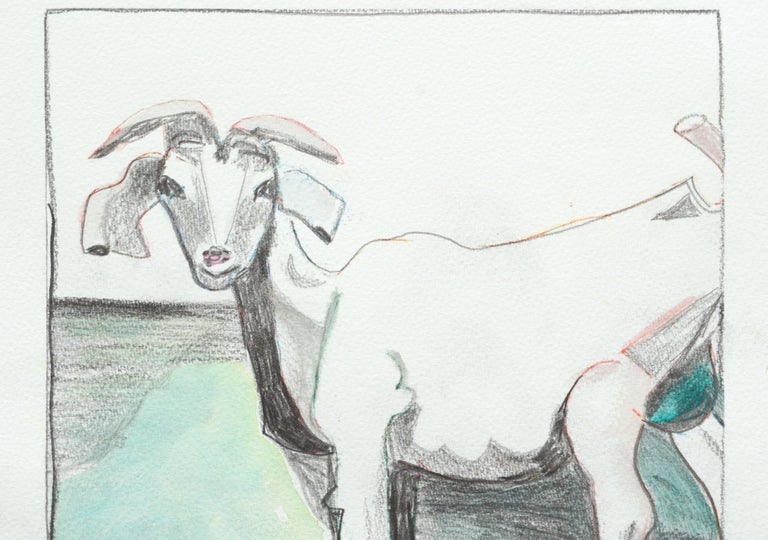Six Goats For Sale 3
