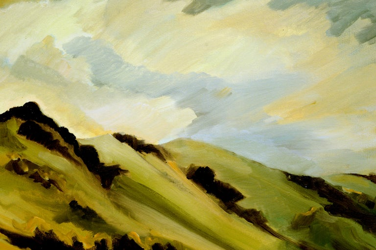 Marin Hills California Landscape by Noel Howard 2