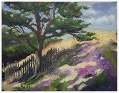 Monterey Hilltop Cypress Landscape