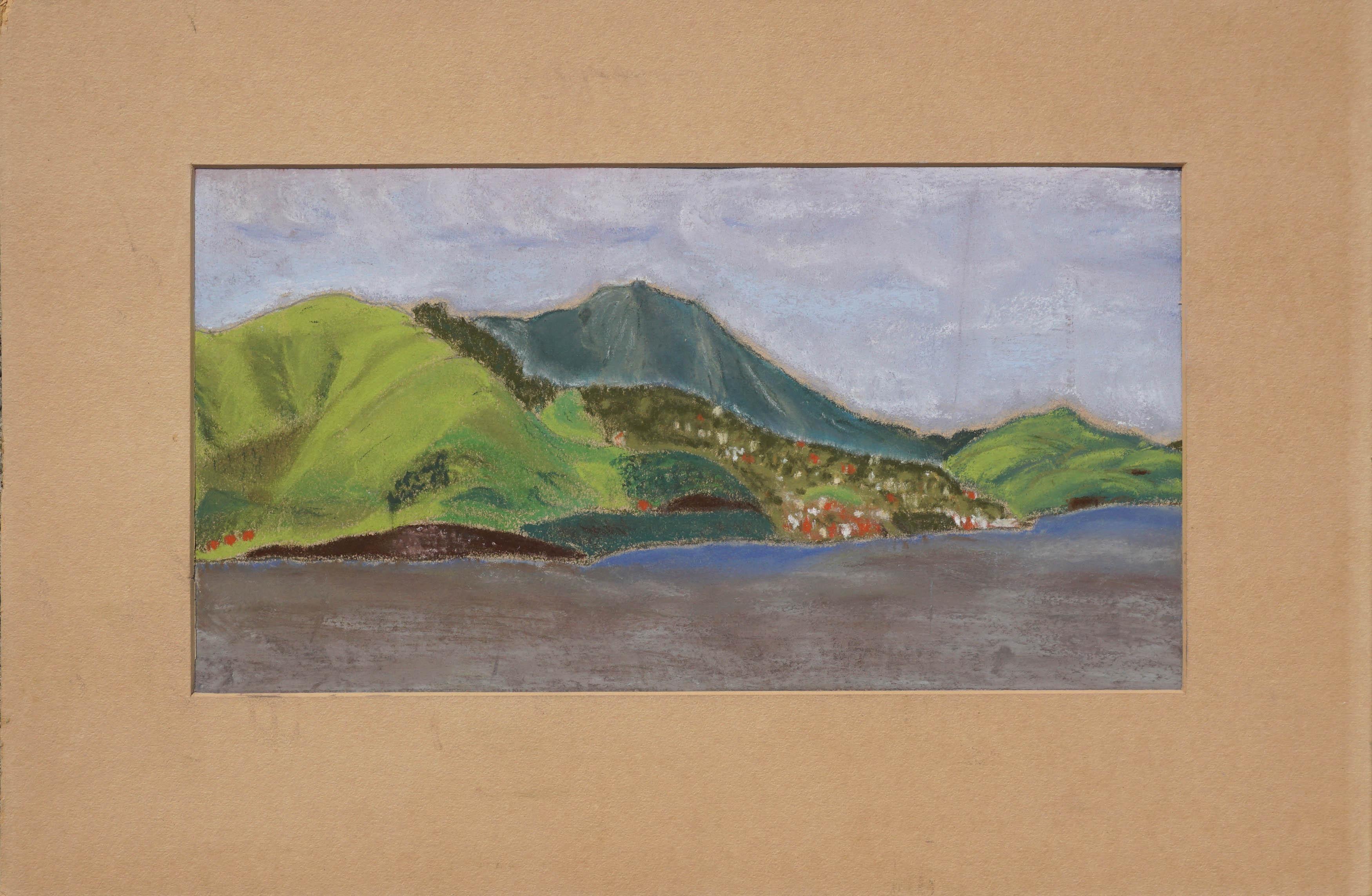 Late 19th Century Avalon, Catalina Island Landscape