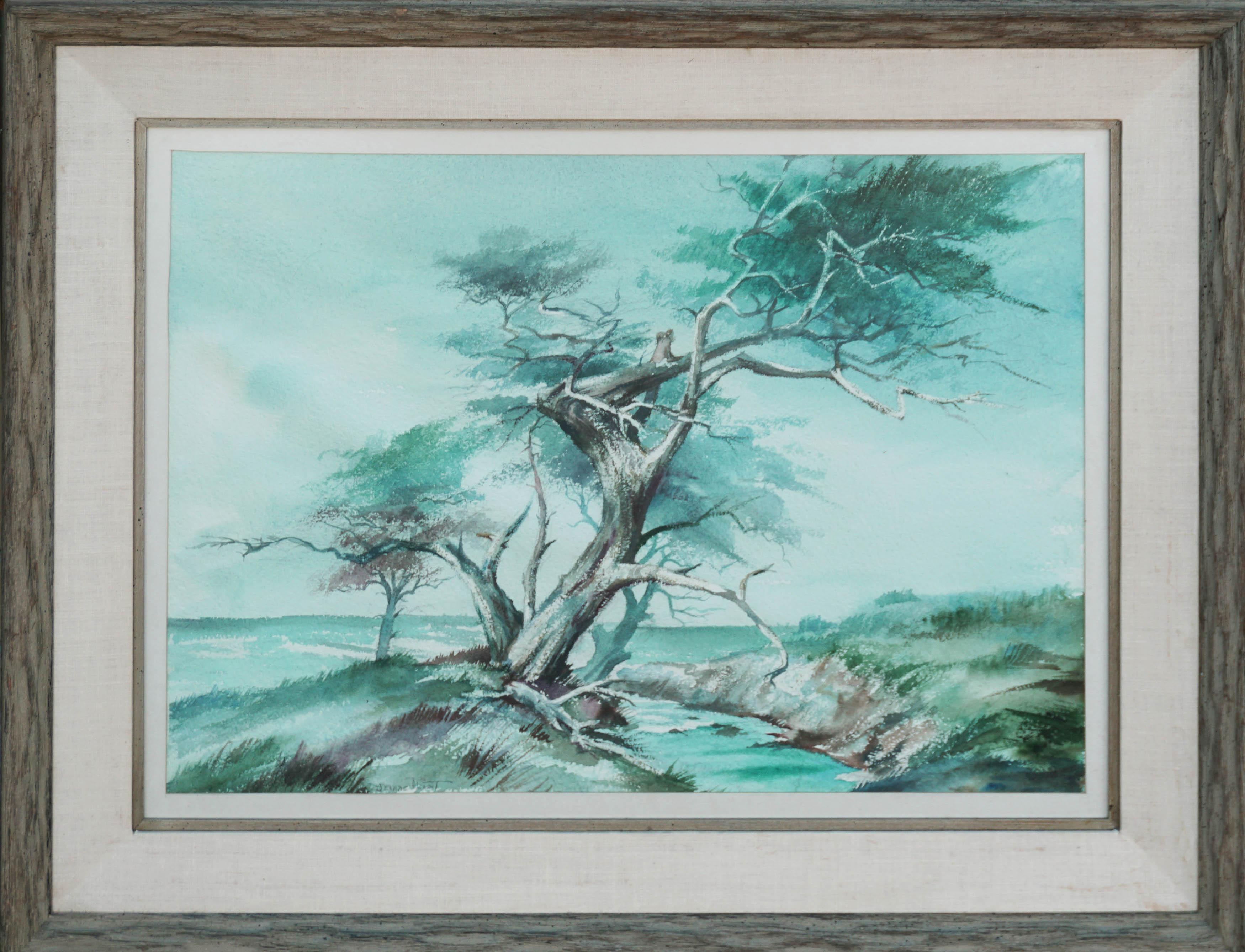 The Old Monterey Cypress Tree Mid Century Landscape