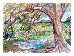 Tree by Pond Landscape
