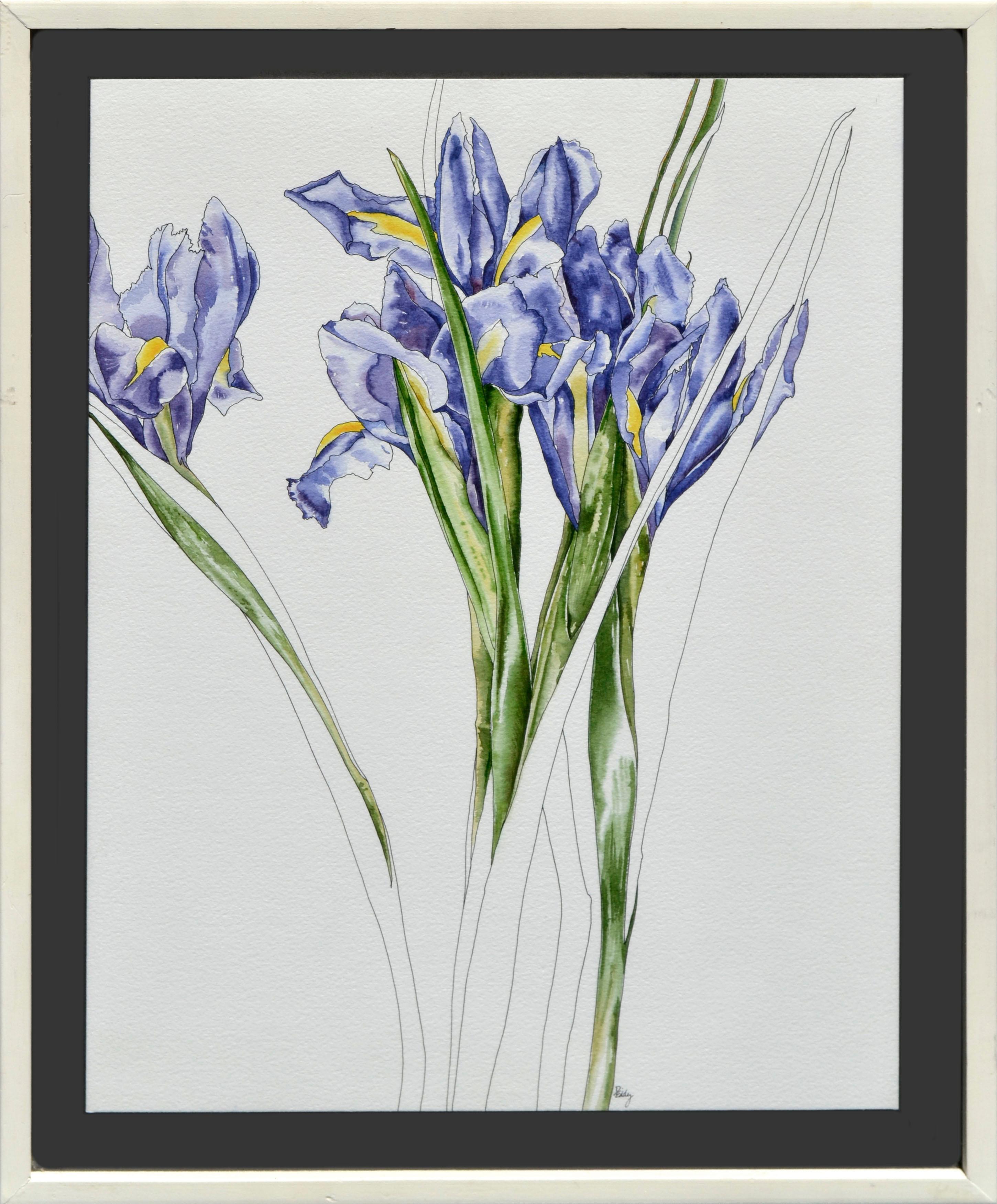 Purple Iris Botanical Study