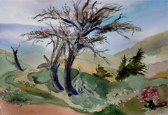 Valley of Trees Landscape