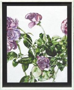 Lavender Roses - Botanical Study