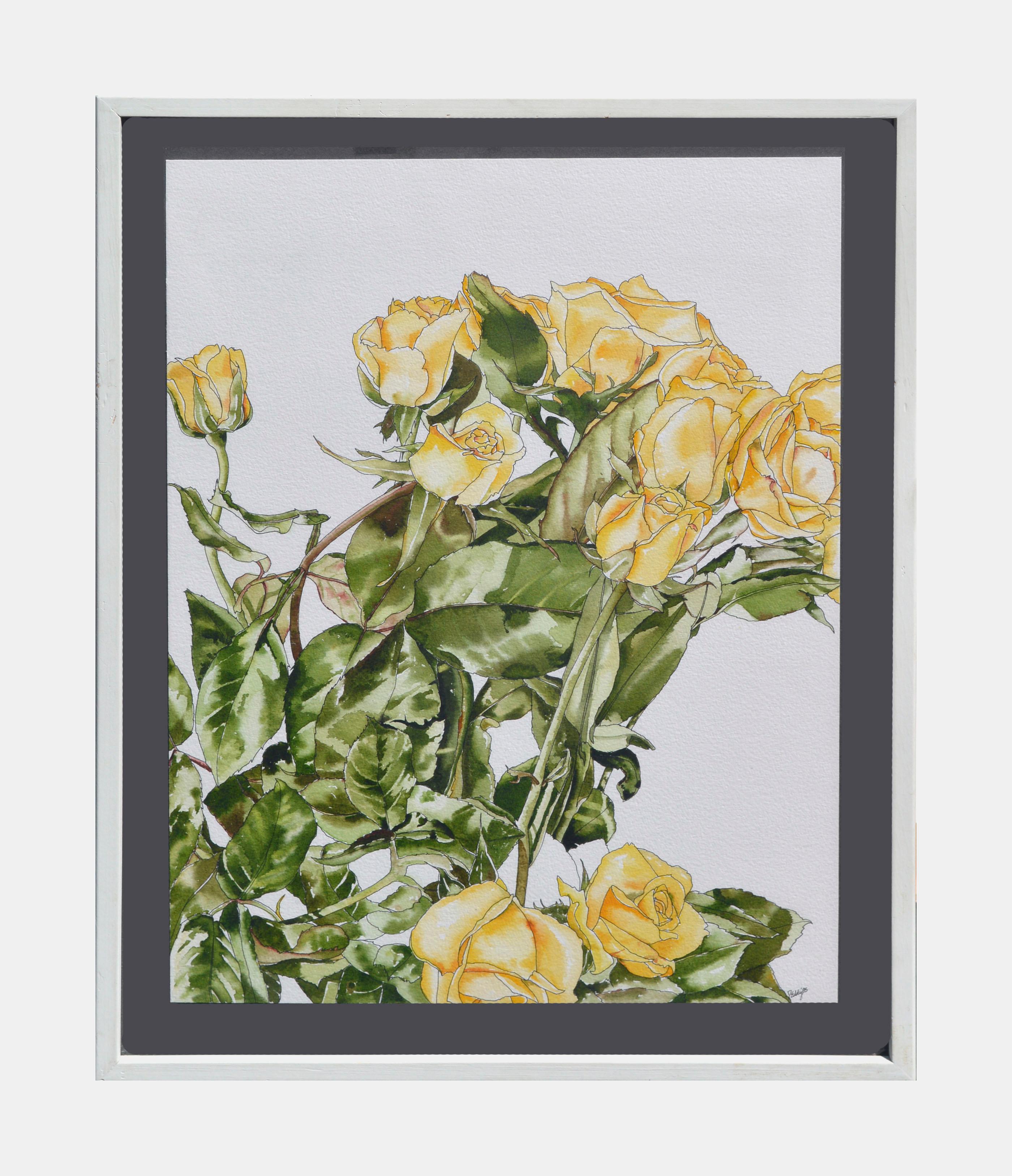 Yellow Roses - Botanical Study