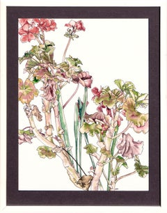 Geraniums & Bulbs - Botanical Study