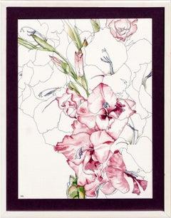 Begonia - Botanical Study