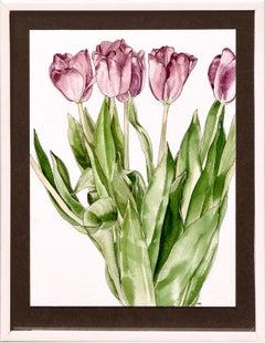 Tulips  - Botanical Study