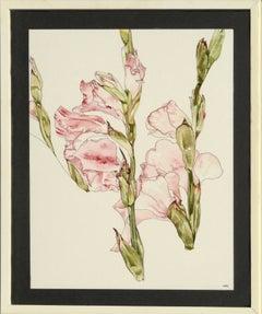 Gladiolas - Botanical Study