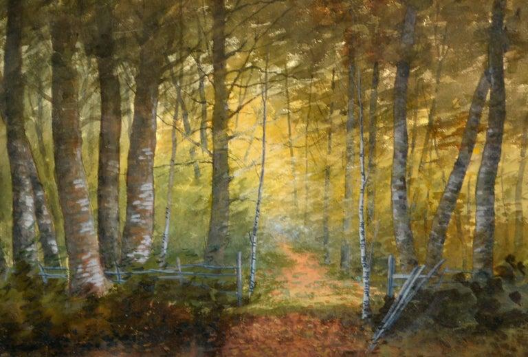Birch Forest Glow Suffolk County, Historic New York Landscape - American Impressionist Art by Susan Field Bissell