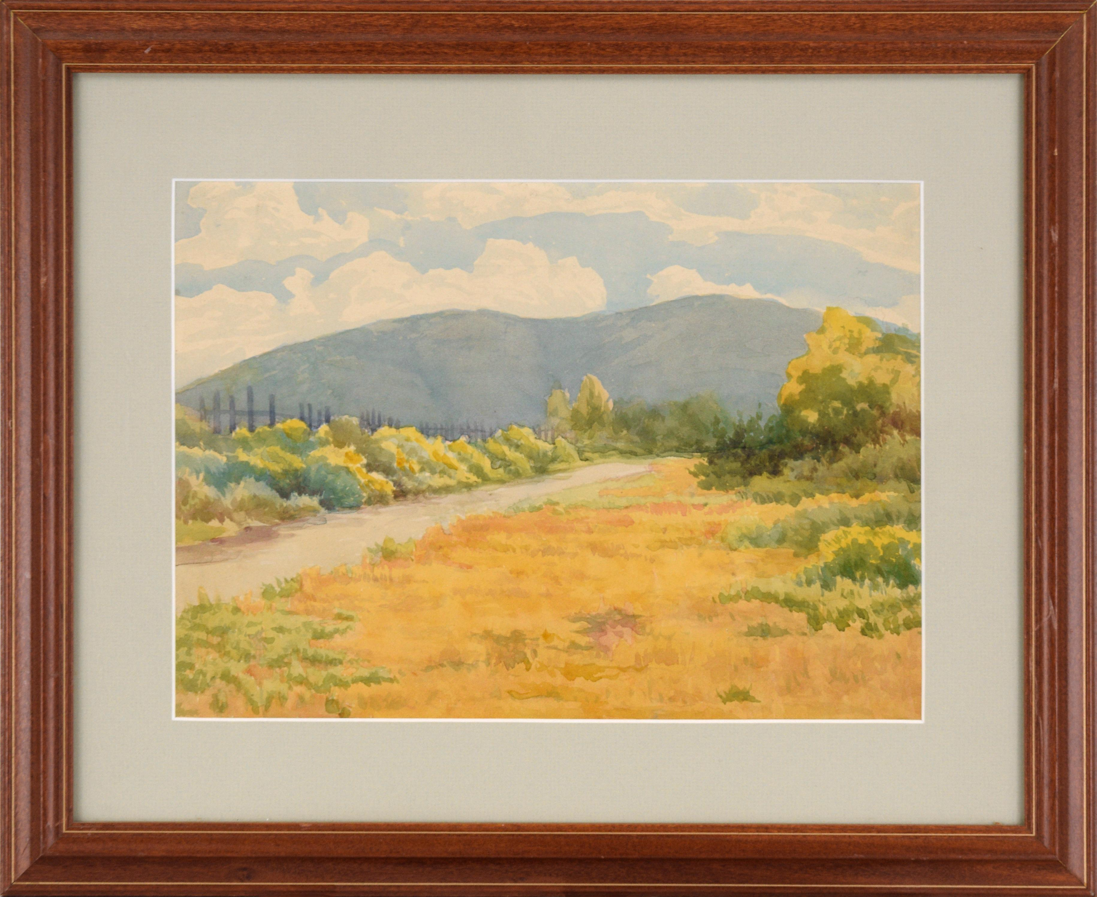 California Hills - Landscape