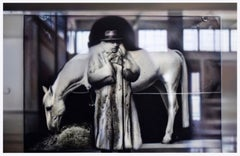 REFLECTIONS ON BEUYS #6 - ARENA: WITH HORSE (DIA) - hyperrealistic painting
