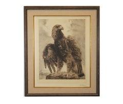 Natrualistic Eagle Etching