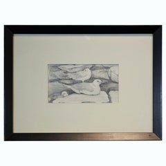 Pencil Study of Seagulls
