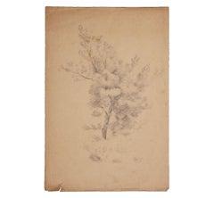 Naturalistic Pencil Study of a Tree