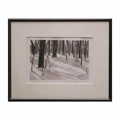 """Trees in Snow"" Black and White Winter Landscape Lithograph 2/10"