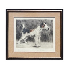 Original Early 20th Century Color Etching of Wire Fox Terrier