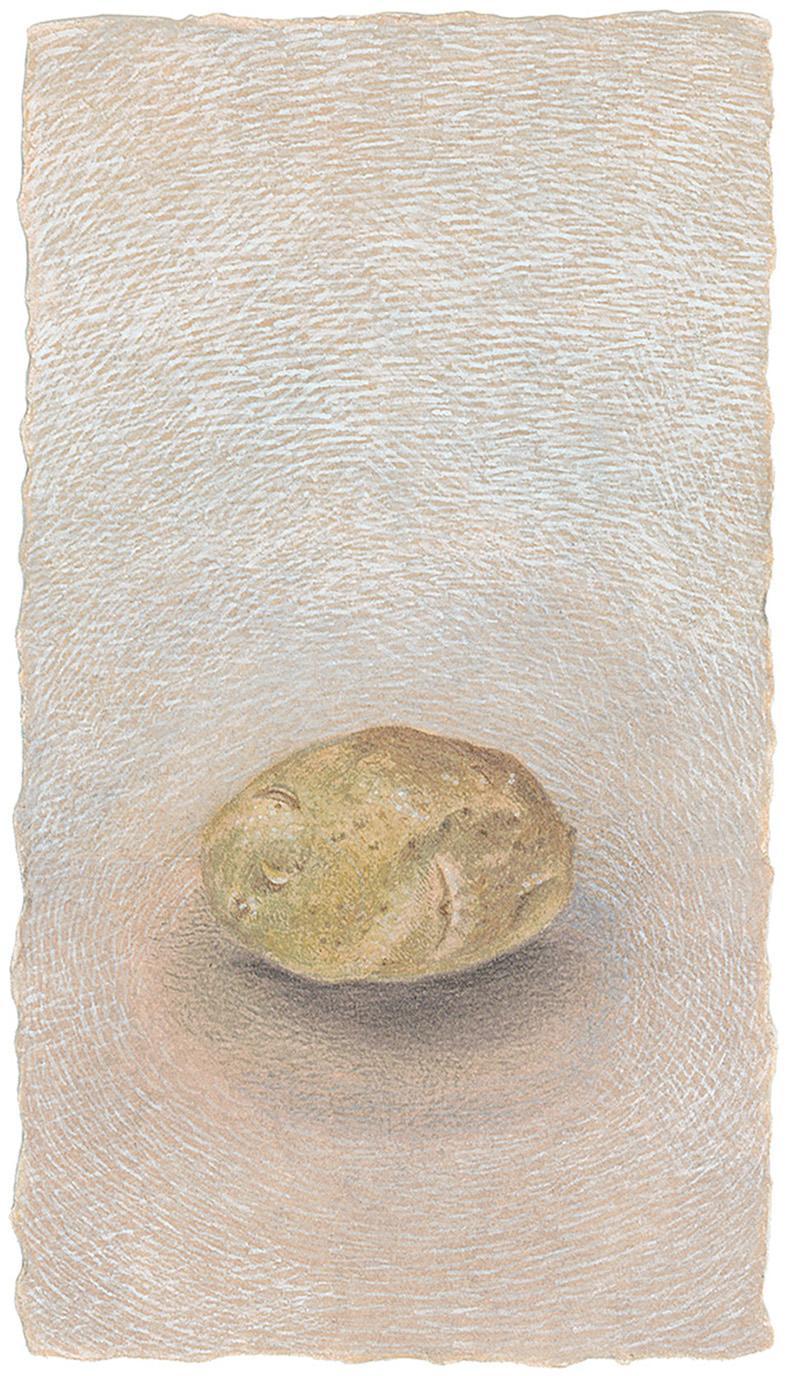 One Potato - Tiny Original Still Life Painting of a Potato on Deckled Edge Paper