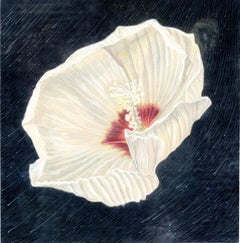 Rose of Sharon with Meteor Shower - Small Scale Original Botanical Painting