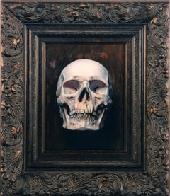 Vanitas - Original Oil Painting of a Human Skull in 17th Century Dutch Style