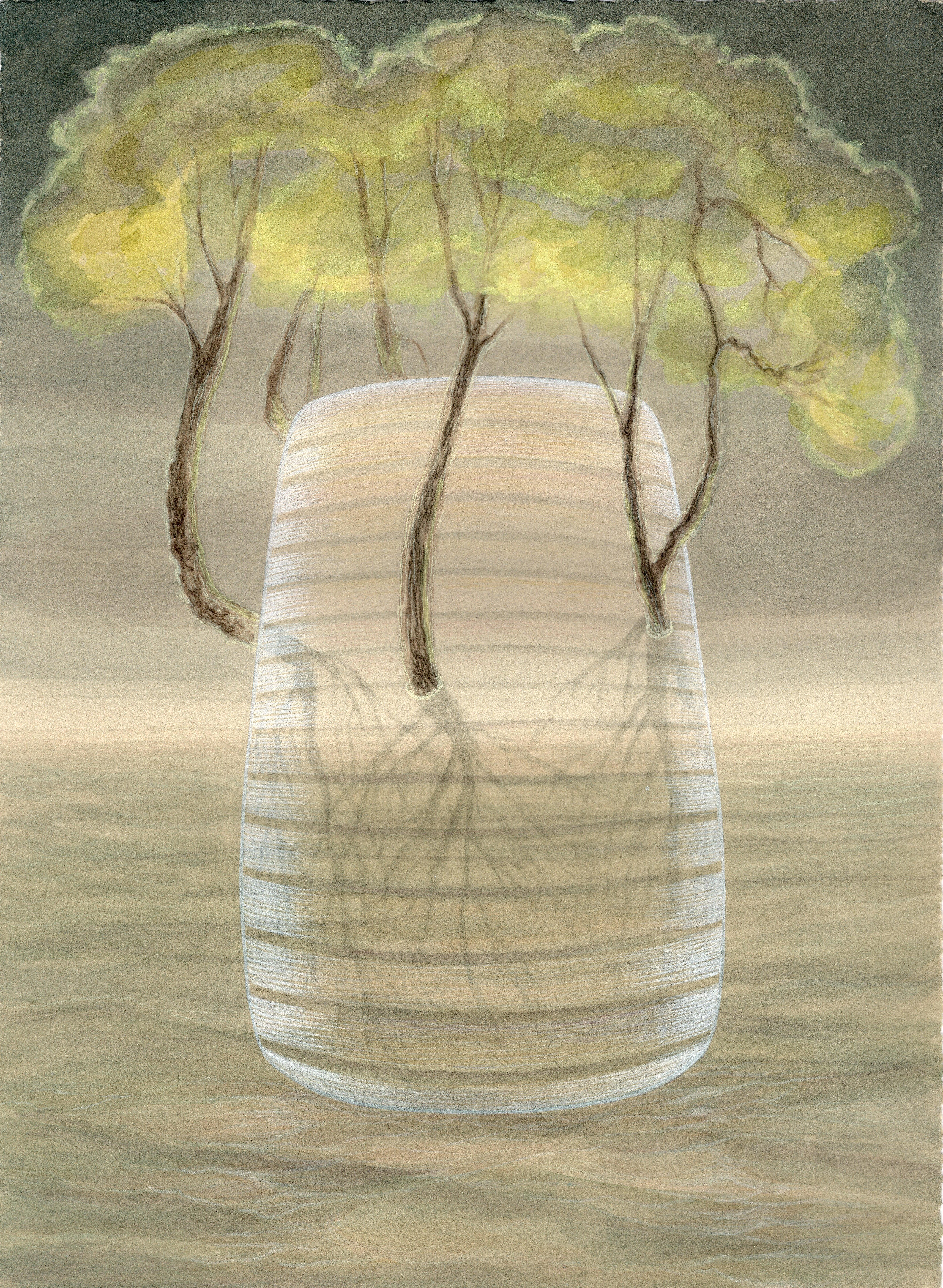 Canopy, Trees Emerging from a Vase, Botanical Watercolor & Gouache on Paper