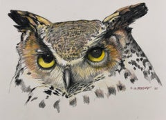 Owl - Colored Pencil Drawing of a Great Horned Owl