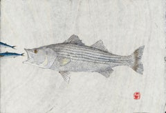 Big Mack Attack - Striped Bass Eating a Mackerel, Watercolor on Mulberry Paper