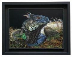 IGUANA - Italian Animalia Oil on Canvas Painting by Ciro Ciardiello