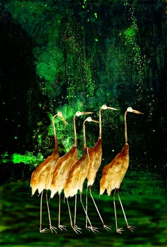 Cranes and Cool Shade