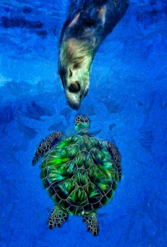 Sea Lion and Turtle