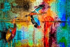 Cranes of Color 102