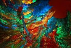 Cranes of Color 112