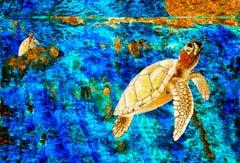 Turtle Sunrise