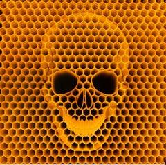 ZMK, Bees Die We Die